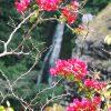 hawaii2013_252-jpg