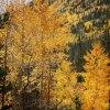 Rockies_2012-09-18_074